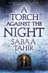 TorchAgainstNight